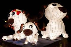 Anno di cani Immagine Stock