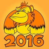 Anno di scimmia del fuoco Immagine Stock