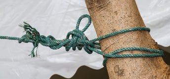 Annodi la corda Fotografia Stock