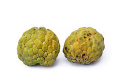 Annona Stock Photos