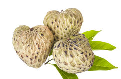 Annona Royalty Free Stock Image