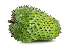 Annona muricata.Soursop fruit Royalty Free Stock Image