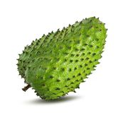 Annona muricata.Soursop fruit Stock Photos