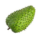 Annona muricata.Soursop fruit Royalty Free Stock Photo