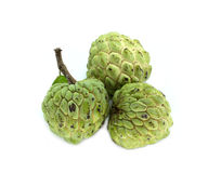 Annona Royalty Free Stock Images