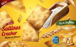 Annonces de biscuit de Saltines Images libres de droits