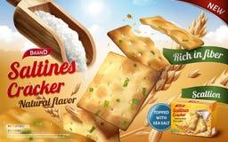 Annonces de biscuit de Saltines Photos stock