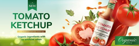 Annonces de ketchup de tomate illustration de vecteur