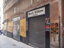 Annotazioni della vedova nera Fotografia Stock Libera da Diritti
