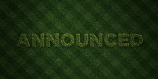 ANNOUNCED - fresh Grass letters with flowers and dandelions - 3D rendered royalty free stock image. Can be used for online banner ads and direct mailers Stock Photography