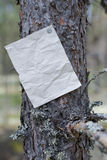 An announcement, a letter, a message on a tree in the forest Stock Photo