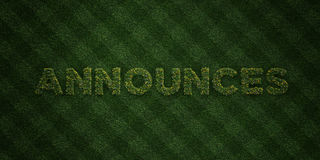 ANNOUNCES - fresh Grass letters with flowers and dandelions - 3D rendered royalty free stock image Royalty Free Stock Photos