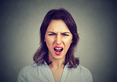 Annoyed angry woman screaming. Negative human emotions. Annoyed angry young woman screaming. Negative human emotions, face expressions Royalty Free Stock Photo