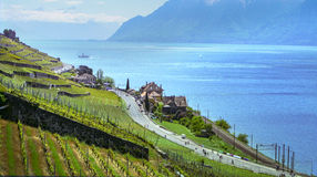 Annual Bicycle event at Lavaux Royalty Free Stock Photography
