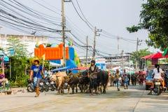 Annual Buffalo Racing Festival. Site in Banbung Chonburi Thailand Royalty Free Stock Photo
