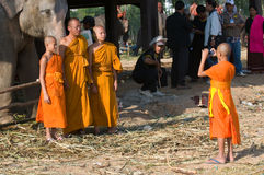 The Annual Elephant Roundup in Surin, Thailand. SURIN - NOVEMBER 21: Three monks having their photo taken in front of an elephant during The Annual Elephant Stock Images