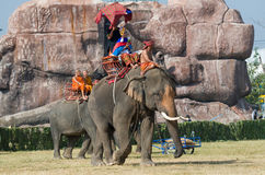 The Annual Elephant Roundup in Surin, Thailand. SURIN - NOVEMBER 21: Elephant equiped in traditional style entering the stadium during The Annual Elephant Royalty Free Stock Images
