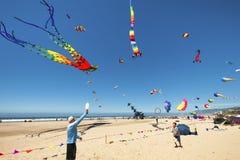 Annual Kite Flying Festival royalty free stock photo