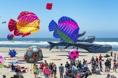 Annual Kite Flying Festival royalty free stock photos
