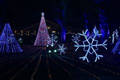 Annual Light Show in Lincoln Park, Chicago royalty free stock images