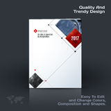 Annual report, business abstract vector template. Brochure desig. N, cover modern layout, poster, flyer in A4 with red rectangular shapes, grid for tech, science Stock Image