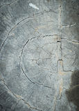 Annual ring wood crack damage texture Royalty Free Stock Photography