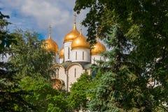 Annunciation καθεδρικός ναός στα φύλλα των δέντρων Στοκ φωτογραφίες με δικαίωμα ελεύθερης χρήσης