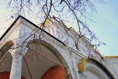 Annunciation kościół Moskwa Kremlin Kolor fotografia Zdjęcie Royalty Free