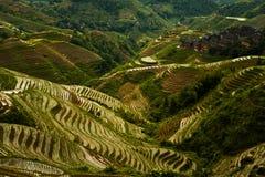 Annuvolamento ripido di Titian Longji della montagna del terrazzo del riso Fotografie Stock