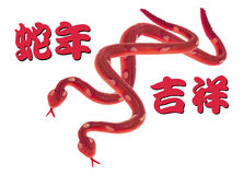 Ano da serpente Imagem de Stock