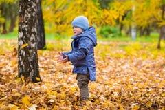 1 ano de bebê idoso anda nas folhas caídas Imagens de Stock Royalty Free