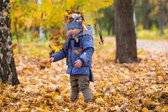 1 ano de bebê idoso anda nas folhas caídas Imagem de Stock Royalty Free