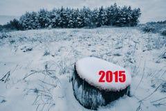 Ano novo Fotos de Stock Royalty Free