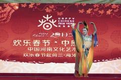 Ano novo chinês 2019 imagens de stock royalty free
