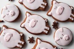 Ano novo das cookies 2019 deliciosos do pão-de-espécie imagem de stock