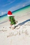 Ano novo do verão na praia Imagem de Stock Royalty Free