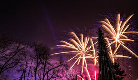 Ano novo 2017 dos fogos-de-artifício Imagem de Stock