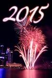 Ano novo feliz Imagem de Stock