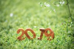 Ano novo feliz 2019, conceito da natureza Foto de Stock