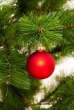 ano novo feliz das decorações da Natal-árvore Fotografia de Stock Royalty Free