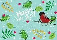 Ano novo feliz das felicitações Imagens de Stock Royalty Free