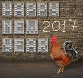 Ano novo feliz feito dos ovos Fotos de Stock Royalty Free