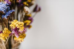 ano novo feliz 2007 Floresce a composição Copie o espaço Flores românticas Ramalhete de flores secadas, coloridas Imagem de Stock Royalty Free