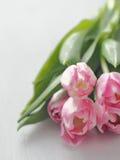 ano novo feliz 2007 Grupo de tulipas cor-de-rosa em cima da tabela de madeira branca Foco seletivo na parte dianteira Imagens de Stock