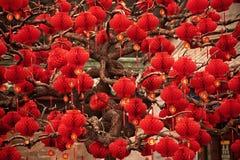 Ano novo lunar chinês Beijing das lanternas vermelhas afortunadas Imagem de Stock Royalty Free