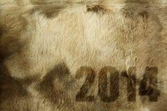2014 na textura da pele Foto de Stock Royalty Free