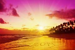 Ano novo 2014 nas Caraíbas. Foto de Stock Royalty Free