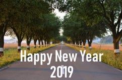 Ano novo 2019 O trajeto novo Começo novo Junto nós vamos Aleia de Jablonova Estrada Árvores inscription fotografia de stock