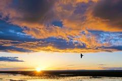 Anoitecer do lago Qinghai foto de stock