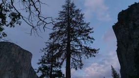 anoitecer do Tempo-lapso em Yosemite video estoque
